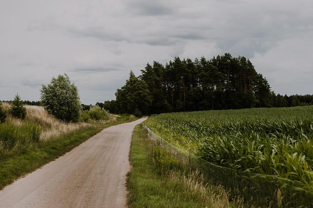 droga-do-mazurskie-siedlisko-kruklin